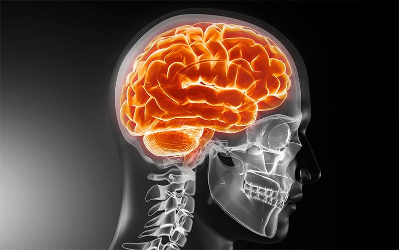 Unidad de Recuperación Neurológica y Daño Cerebral
